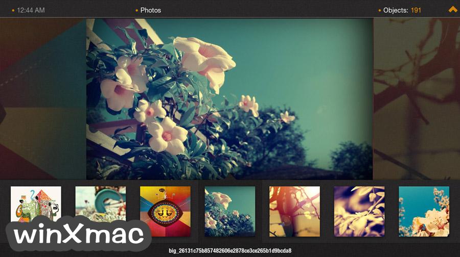 Plex Home Theater for Mac (32-bit) Screenshot 5