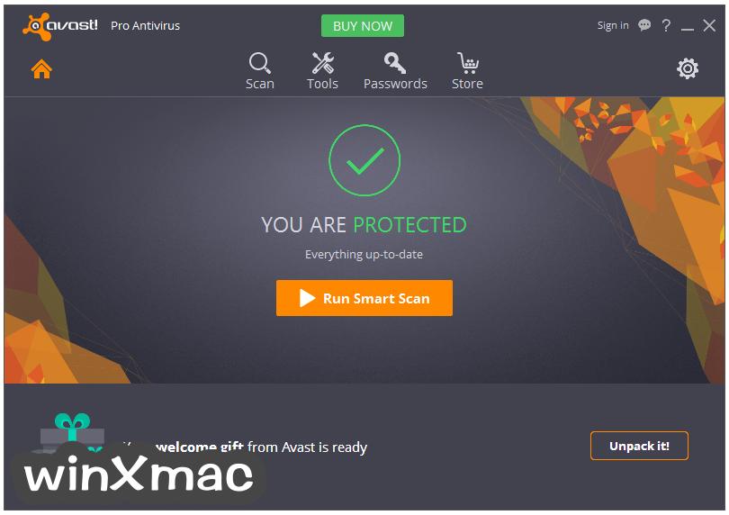 Avast Pro Antivirus Screenshot 1