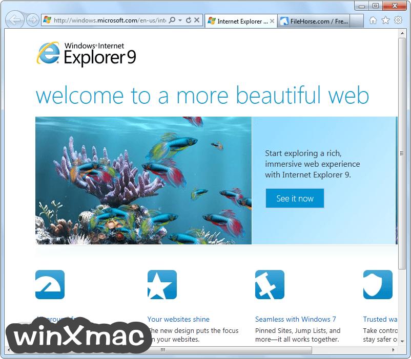 Internet Explorer (Windows7) Screenshot 1