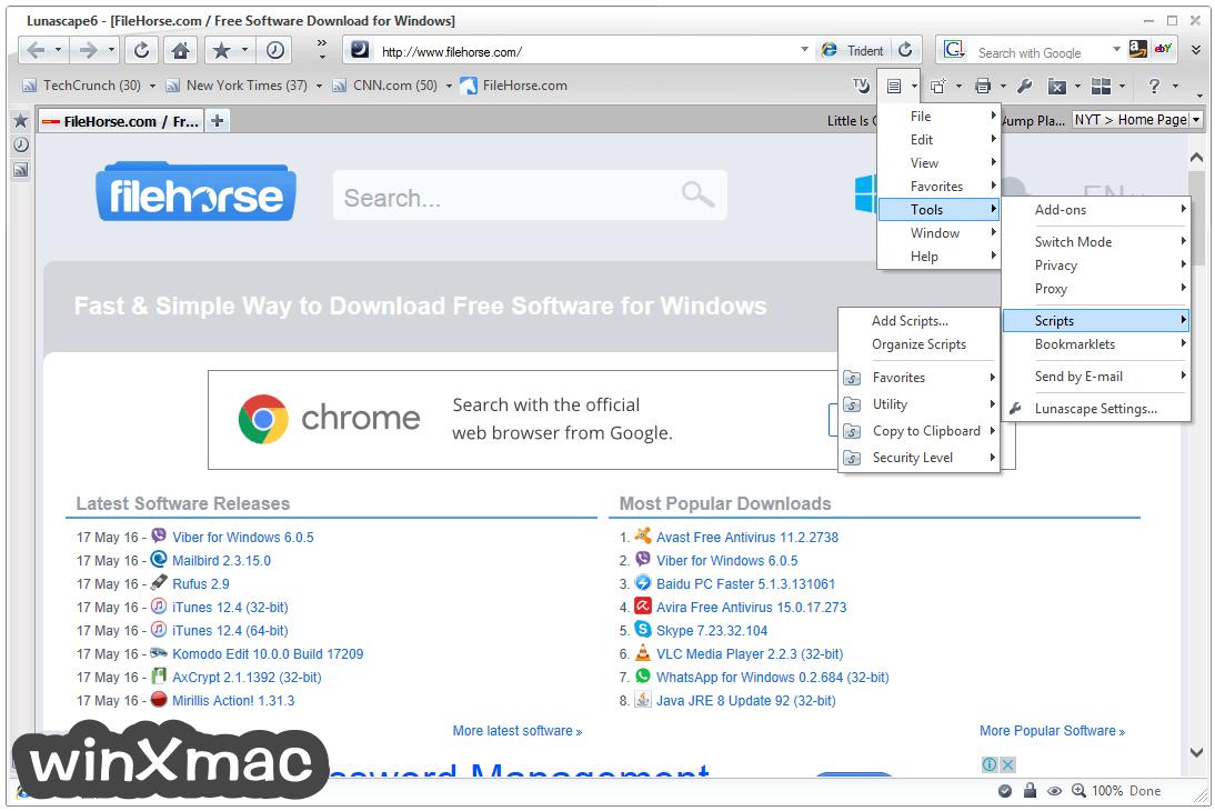 Lunascape Browser Screenshot 3