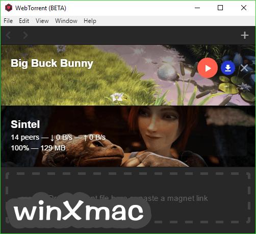 WebTorrent (32-bit) Screenshot 1