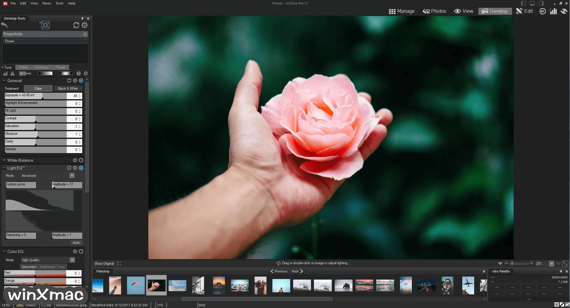 ACDSee Photo Studio Professional (64-bit) Screenshot 2
