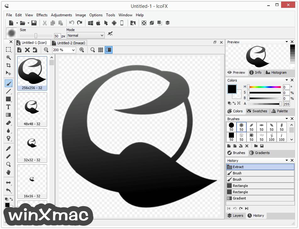 IcoFX Screenshot 1