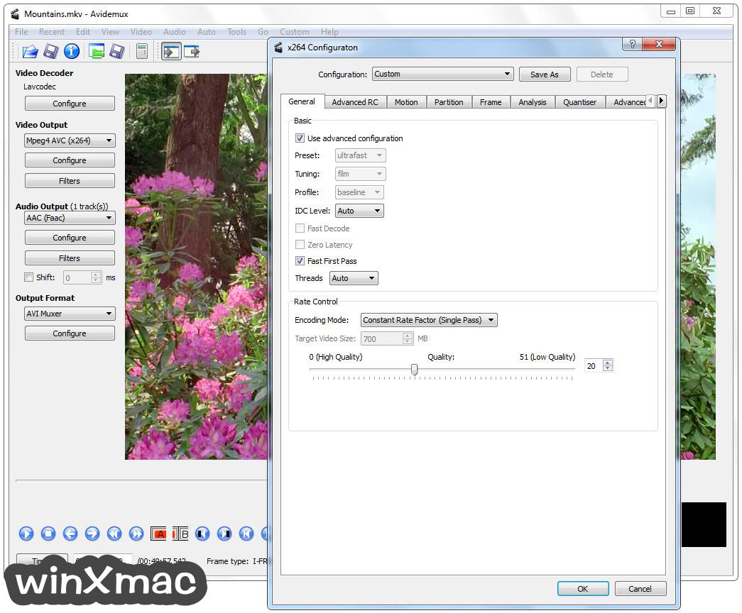 Avidemux (32-bit) Screenshot 3