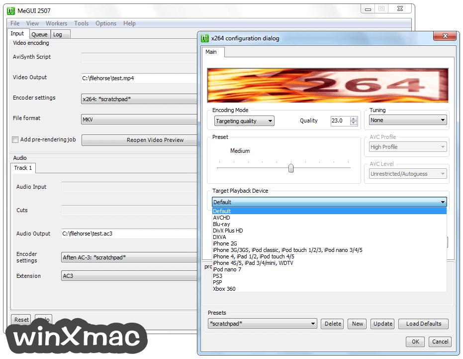 MeGUI Screenshot 2